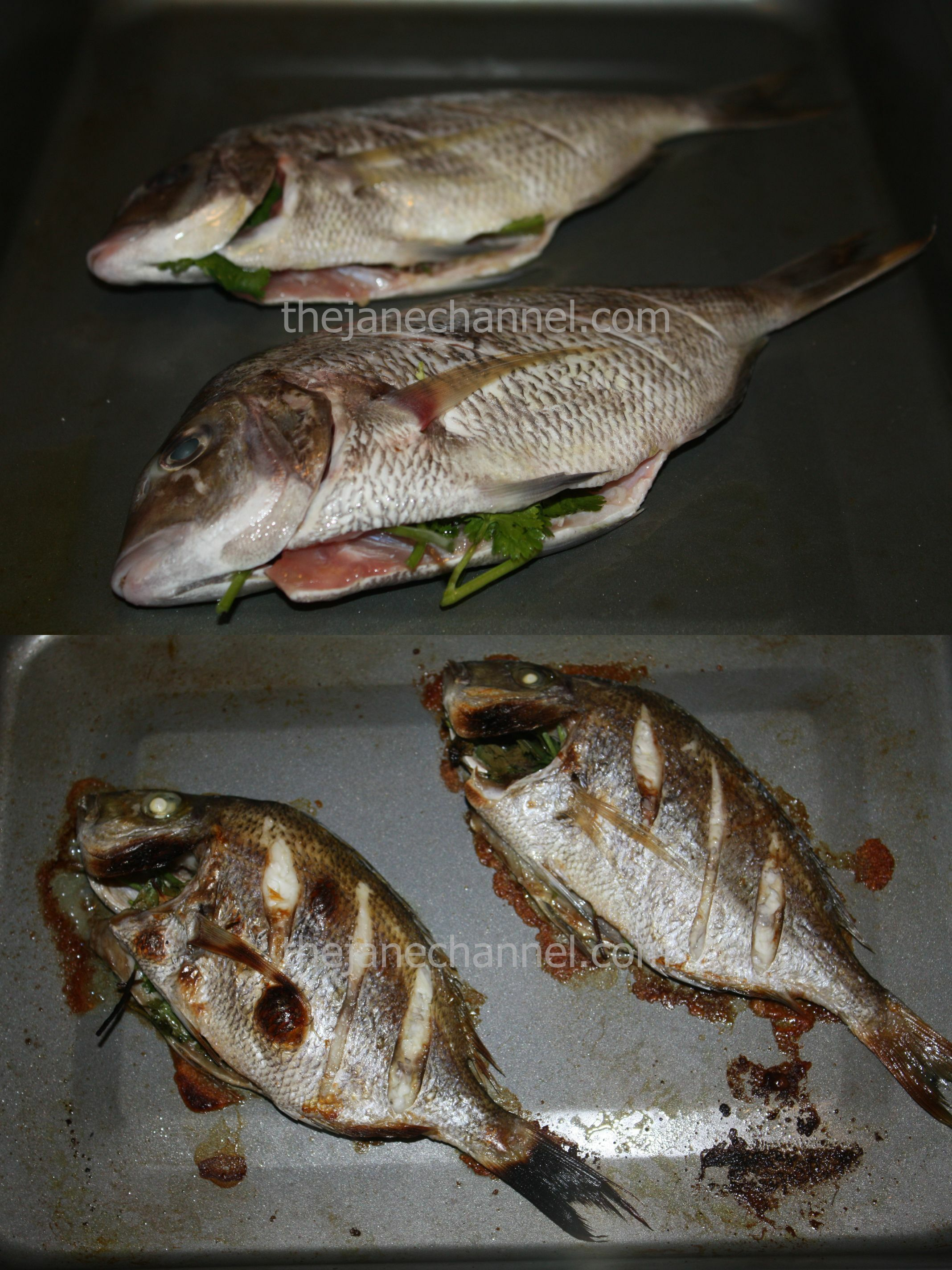Fish recipes thejanechannel for Porgy fish recipe